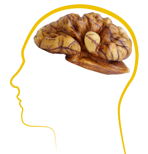 Researchers Study Eating Abnormalities in Frontotemporal Dementia Subtypes