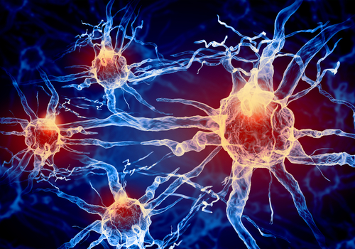 Pharnext's Combination Alzheimer's Therapy shows Synergistic Effects in Mice Models