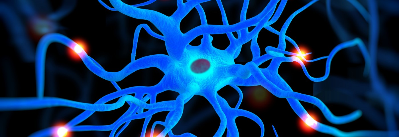 Alzheimer's Study Finds Astrocytes Do Not Rush to Destroy Brain Plaque