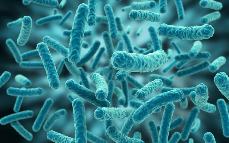 microbes and Alzheimer's