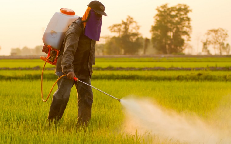 pesticides, fungicides and Alzheimer's