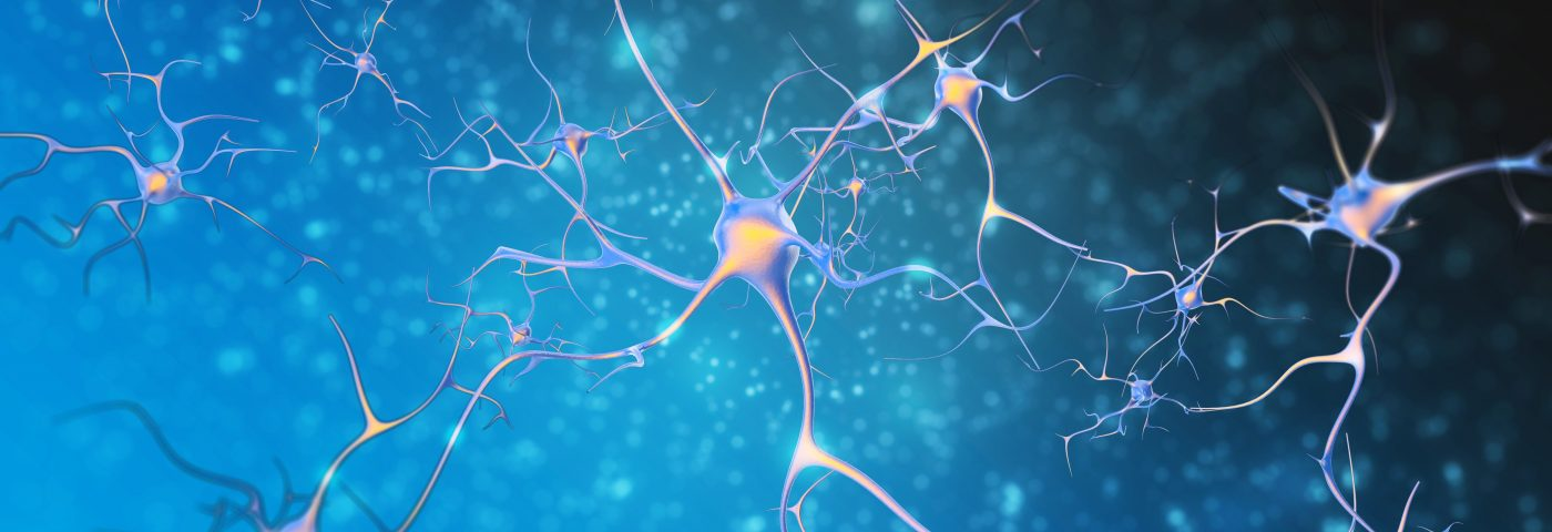 ALS Drug, Riluzole, Being Tested in Alzheimer's Patients May Work by Protecting Neurons