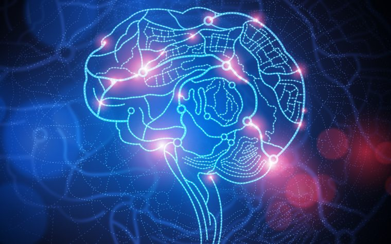 Epileptic activity in Alzheimer's