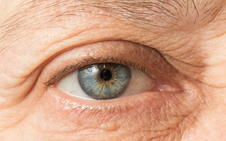 Eye Scan That Detects Protein in Retina Could Aid in Quicker Alzheimer's Diagnoses, New Study Reports