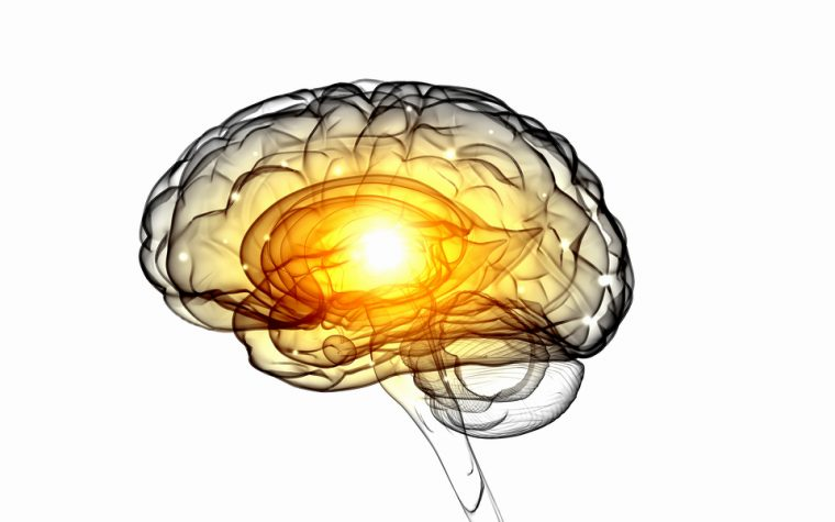 cognitive resilience in Alzheimer's